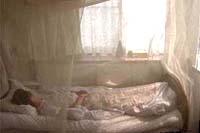 ベット蚊帳